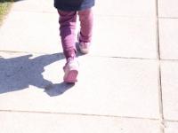 子どもを守る!散歩の安全対策