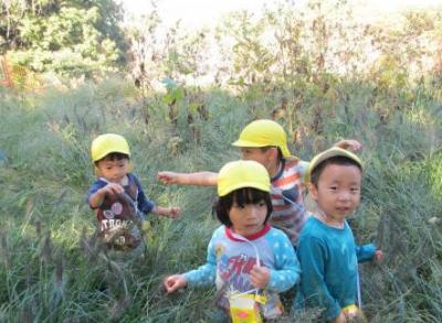 [たまプラーザ 認可園]【月給20.3万円~】職員の年齢層が広く日々の保育や行事などを協力しながら作り上げています♪年間休日120日以上◎働きやすい環境です☆彡