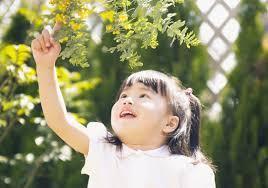 [日吉本町 認可]福利厚生充実♪園児定員60名で家庭的で落ち着いた環境で子ども達と過ごせる保育園です!上京者向け社宅制度あり☆年間休日120でお休みもしっかり取れます☆彡