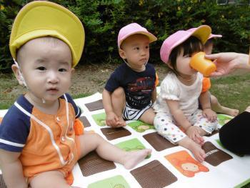 [京橋 公民認定こども園]好奇心を伸ばし、生きる力を大切にした保育を行っています!駅チカで働きやすい環境のこども園です!