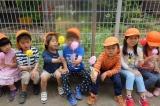 [三鷹 公民認可園]「安心して、長く、働きやすい」職場です!自分の子どもを預けたいと思える保育園づくりに取り組んでいます!
